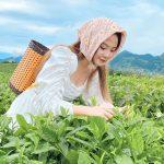 Lá chè xanh có phải là thực phẩm thần tiên giúp chữa bách bệnh hay không?