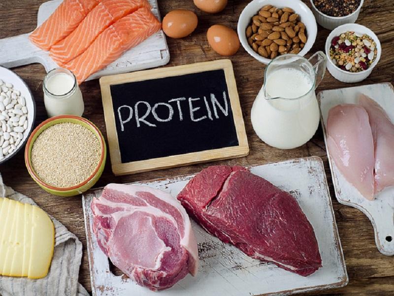 Chất đạm (protein)