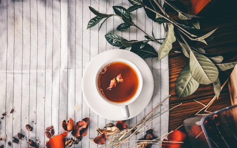 Uống trà rất có lợi cho sức khỏe